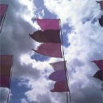 Pink Flags in Jazzworld